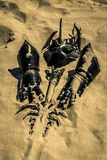 Accessories of a knight on the sand. royalty free stock image