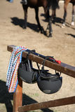 Accessories for show jumping. Stock Image