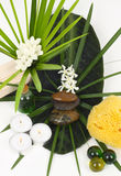 Accessories for spa with flowers of jasmine Royalty Free Stock Photo