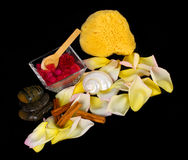 Accessories for spa with salt bath, cinnamon, stones and petals Stock Photography