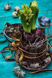 Accessories to tea fruit tea in vintage style Stock Photos