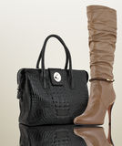 Accessory concept. Woman bag with shoe, accessory concept Royalty Free Stock Photo