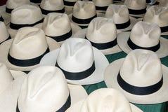 Accessory - Panama Hats Stock Photos