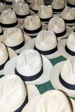 Accessory - Panama Hats Royalty Free Stock Photography