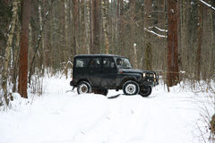 Acción campo a través en el bosque, el 4x4, la nieve y el vehículo Imagen de archivo