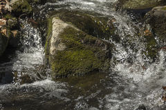 Acción congelada cascada Foto de archivo libre de regalías