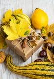 Acción de gracias Autumn Gift con la decoración de las calabazas y de las castañas Fotos de archivo libres de regalías