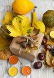 Acción de gracias Autumn Gift con la decoración de las calabazas y de las castañas Foto de archivo