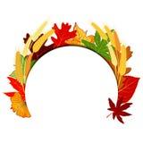 Acción de gracias Autumn Leaf colorido Imagenes de archivo