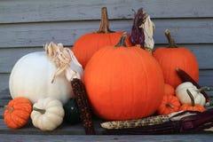 Acción de gracias, caída, fondo del otoño Fotos de archivo libres de regalías