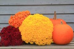Acción de gracias, caída, símbolos del otoño Imagen de archivo