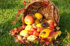 Acción de gracias - cesta colorida del otoño con las frutas Imagen de archivo