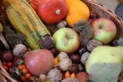 Acción de gracias - cesta colorida del otoño con las frutas Foto de archivo libre de regalías