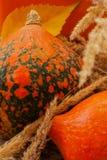 Acción de gracias, día de fiesta de la familia, aún vida con las calabazas del otoño, vintage Foto soleada Imagen de archivo libre de regalías