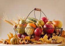 Acción de gracias del día de fiesta del otoño Todavía vida con la calabaza y las manzanas, Foto de archivo libre de regalías