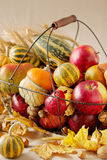 Acción de gracias del día de fiesta del otoño Todavía vida con la calabaza y las manzanas, Fotos de archivo
