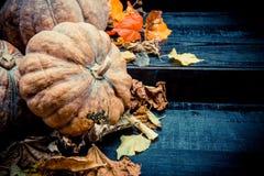 Acción de gracias en la estación del otoño Fotografía de archivo libre de regalías