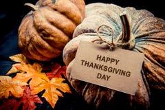 Acción de gracias en la estación del otoño Fotos de archivo