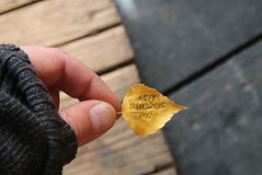 Acción de gracias feliz - texto y hoja del otoño Imagenes de archivo