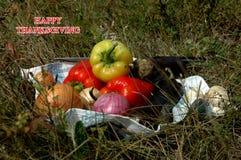 Acción de gracias feliz verduras para la acción de gracias Fotos de archivo