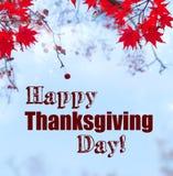Acción de gracias feliz y hojas de arce rojas Imagen de archivo