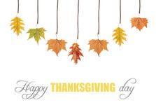 Acción de gracias feliz y hojas que cuelgan en rama de árbol Imágenes de archivo libres de regalías