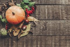 acción de gracias o endecha del plano de la tarjeta de felicitación del concepto de Halloween Beauti Imagen de archivo libre de regalías