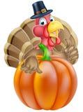 Acción de gracias Turquía y calabaza Foto de archivo libre de regalías