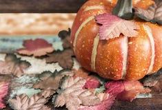 Acción de gracias y concepto de Halloween de calabaza con las hojas de arce Foto de archivo