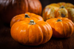 Acción de gracias y Halloween Imagen de archivo