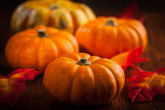 Acción de gracias y Halloween Foto de archivo