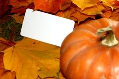 Acción de gracias y tarjeta en blanco de Halloween cerca de la calabaza y de las hojas de otoño Foto de archivo