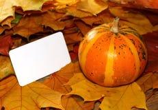 Acción de gracias y tarjeta en blanco de Halloween cerca de la calabaza y de las hojas de otoño rayadas Fotos de archivo
