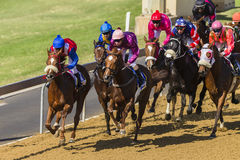 Acción de la carrera de caballos Foto de archivo