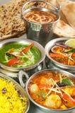 Acción de la diversa comida india en cuencos del metal y en las placas de metal Imágenes de archivo libres de regalías