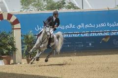 Acción de la JI Al Shaqab 2013 Imagenes de archivo