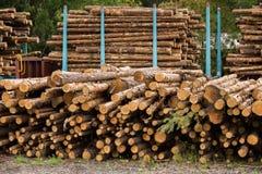 Acción de la madera Imagenes de archivo