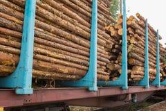 Acción de la madera Imagen de archivo libre de regalías
