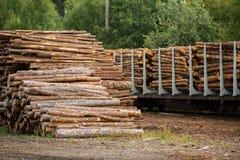 Acción de la madera Foto de archivo libre de regalías