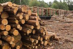 Acción de la madera Fotografía de archivo libre de regalías