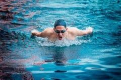 Acción de la natación del movimiento de mariposa Foto de archivo libre de regalías