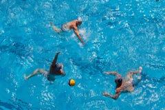 Acción de la piscina del Agua-polo Fotografía de archivo libre de regalías
