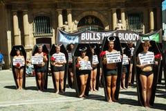 Acción de la protección animal en Pamplona Imagen de archivo