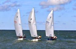 Acción de la raza de la regata de la navegación Fotografía de archivo