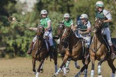 Acción de las mujeres de los jinetes del caballo de PoloCrosse Imagen de archivo