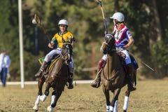 Acción de las mujeres de los jinetes del caballo del mundial de PoloCrosse Fotos de archivo