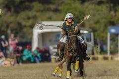 Acción de las mujeres del caballo de PoloCrosse Fotos de archivo libres de regalías