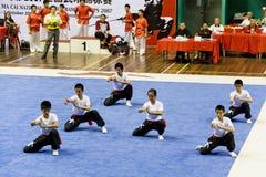 Acción de las personas de Wushu Imágenes de archivo libres de regalías