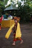 Acción de los huérfanos jovenes de un cacao, de un café y de una plantación de la especia en el pueblo de Kalibaru en Java Indone Imagenes de archivo