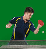 Acción de los tenis de mesa Imagen de archivo